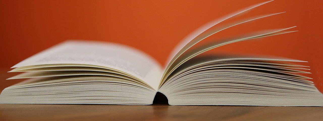 Korrekturlaesning-bog